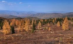 Алтай - горная страна