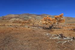 В горах Чаган-Узуна