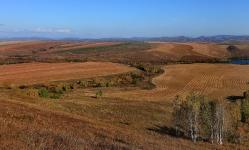 Алтайские поля