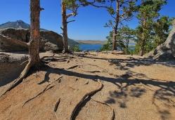 Жизнь на вершине скалы