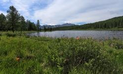 Улаганские озера. Кеделю