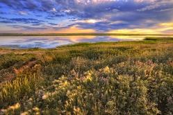 Озеро в Большекулачье, Омская область