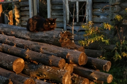 Жительница деревни Окунево