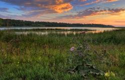 Закат на озере.   д. Саратово, Горьковский район. Омская область