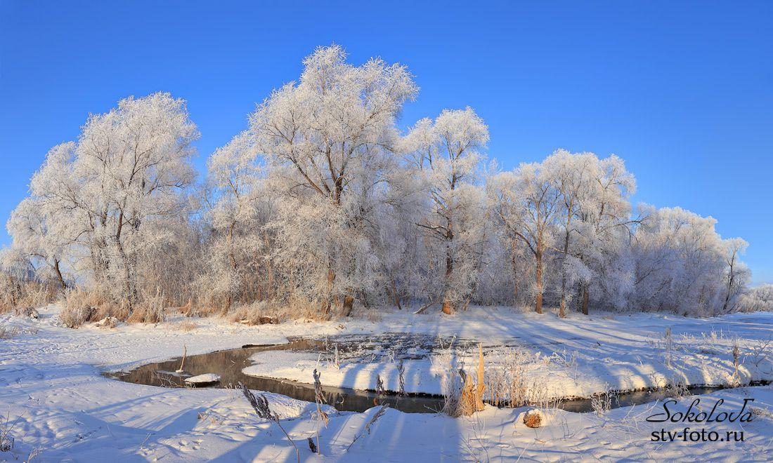 В плену зимы
