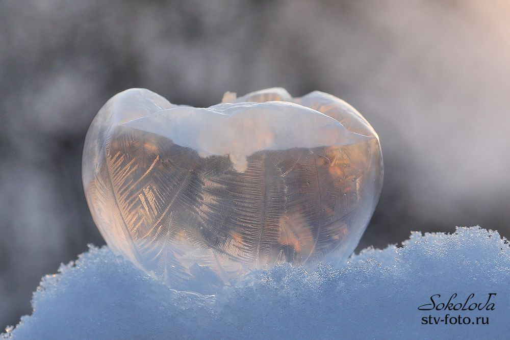 Замерзший мыльный пузырь